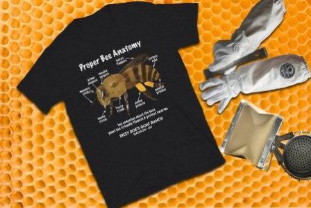 WTBEB Bee Anatomy
